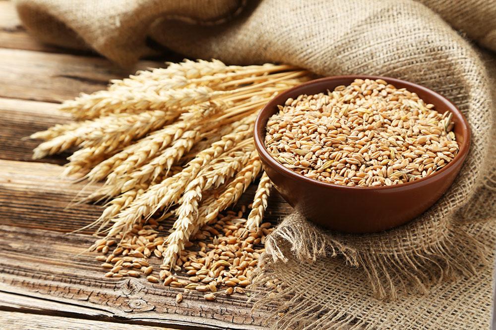 gluten-cereale-1.jpg