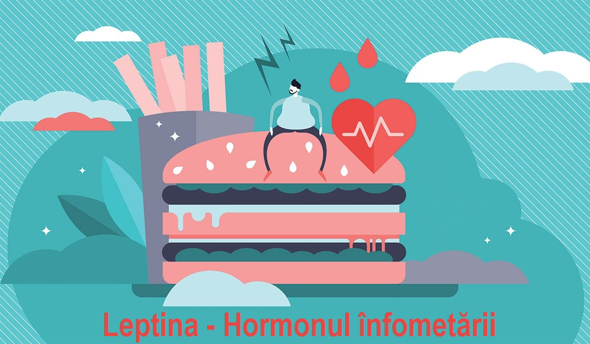 Leptina-hormonul-infometarii.jpeg